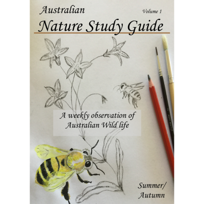 A Walk Through the Australian Nature Study Guide | Summer/Autumn | Volume 1
