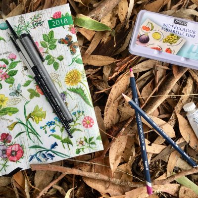 Starting a Nature Journal