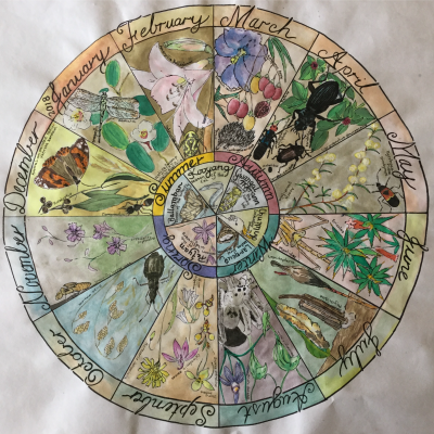 Phenology Wheel | December