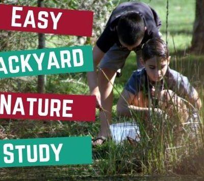Easy Backyard Nature Study