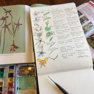 Six Nature Study Activities